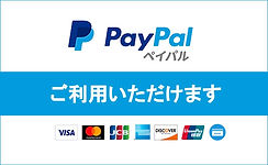 20190228_paypal_650_400.jpg