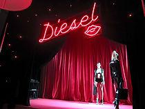 diesel_elotic_20131101_016-thumb-660xaut
