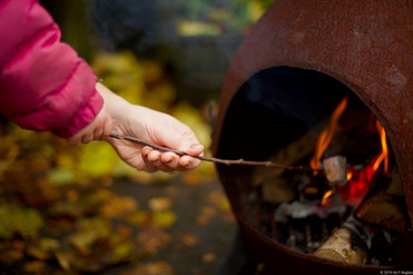 Hands toasting marshmallows.jpg