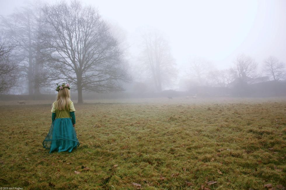 Misty meadow lola and sheep.jpg