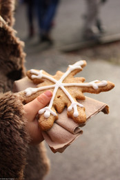 Hand holding Christmas biscuit