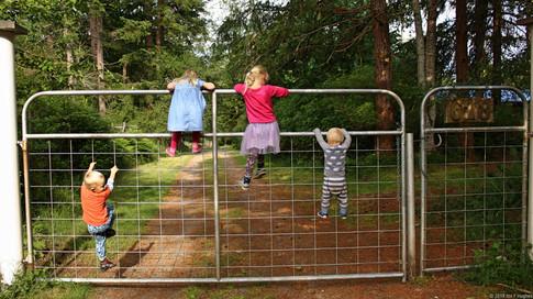Children climbing up fence