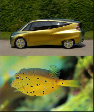 Biomimic_fish
