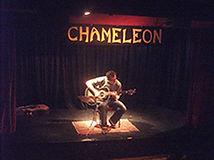 Chameleon4-215.jpg
