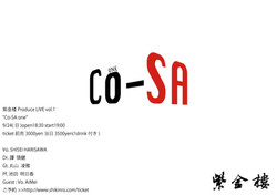 Co-SAone