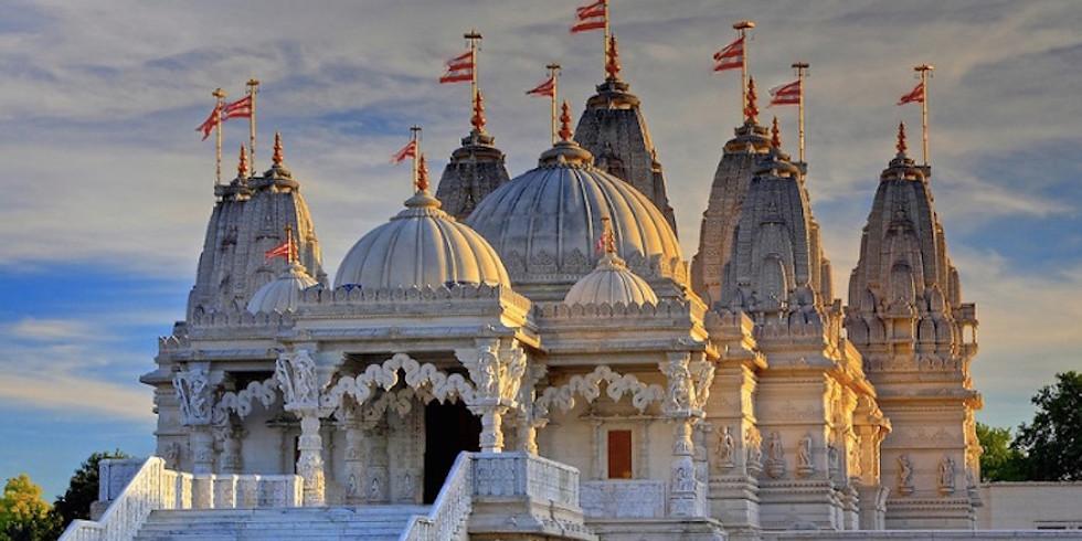 POSTPONED - MVWI Outing - Neasden Hindu Temple