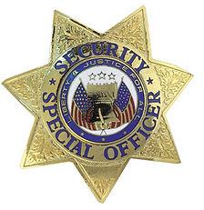 Security Badge.jpg