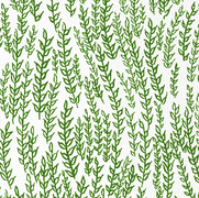 forest greenwheat field.png