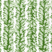 Leaves a Scollin Forest Green on White
