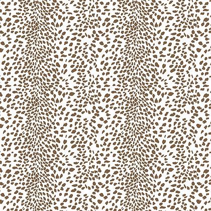 Dalmatian Khali Dorothy