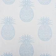 Ananas Sky