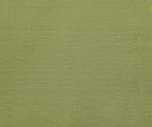 Behl Designs Soie Dupion Silk Celery