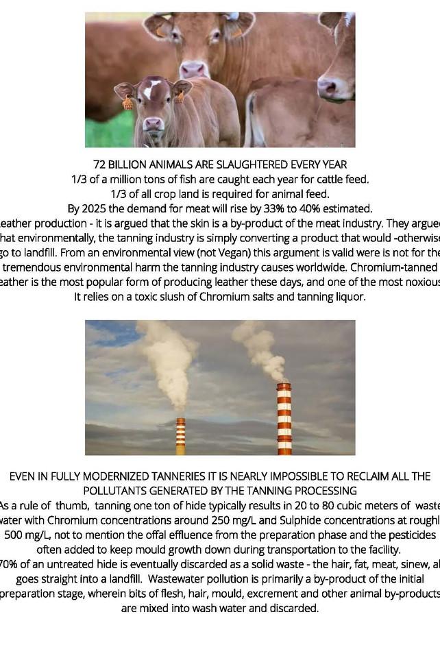 MOTIVO Vegan Leather_Page_7.jpg