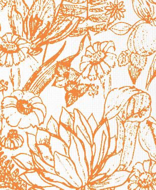 Tillett Textiles Port Manteau Carrot