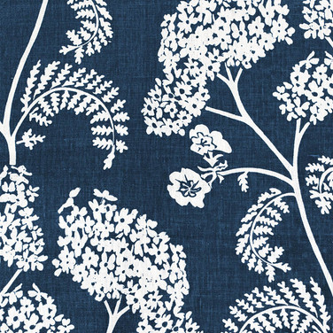 Achillea Ground Large Burghley Blue