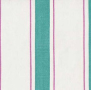 Indian Stripe Turquoise Pink