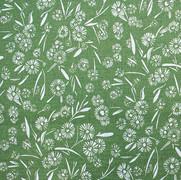 Daisy Daisy Grass Green