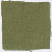 Neva Fern Green