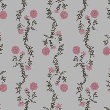 Poppy Stripe Pink Oyster