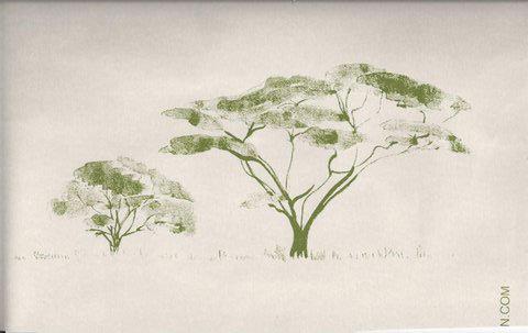Mally Skok Botswana Trees Wallpaper Peridot