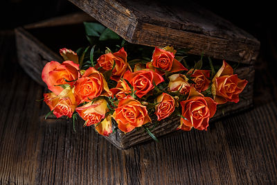 beautiful-roses-PNXLHZU copy.jpg