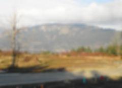 Clement Real Estate, Clement Real Estate Duncan, Clement Real Estate Cowichan, Clement Real Estate Cowichan valley, Duncan realtor, Duncan British Colombia realtor, Duncan real estate agent, Duncan British Colombia real estate agent, Cowichan realtor, Cowichan British Colombia realtor, Cowichan real estate agent, Cowichan British Colombia real estate agent, Cowichan Valley realtor, Cowichan Valley British Colombia realtor, Cowichan Valley real estate agent, Cowichan Valley BC real estate agent, Clement Real Estate Cowichan valley British Colombia, Clement Real Estate Duncan British Colombia