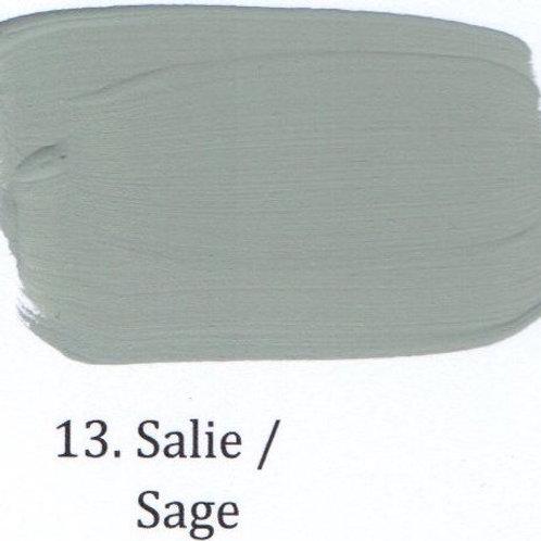 Kleur 13. Salie