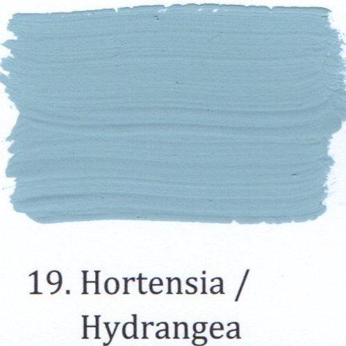 Kleur 19. Hortensia