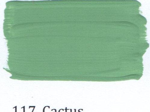 Kleur 117. Cactus