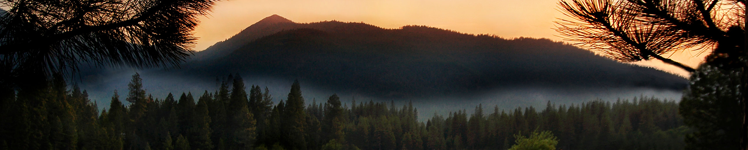 pond sunset slice.jpg