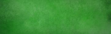 Kravegan _ Interactive Wall (1).png