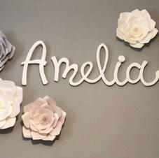 amelia sign.jpg