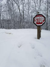 Snow Covered Stop Sign