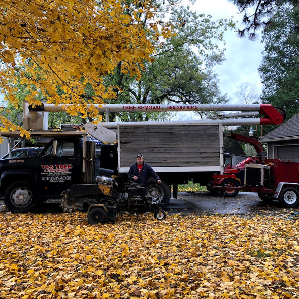 T&S Tree-Equipment Decals
