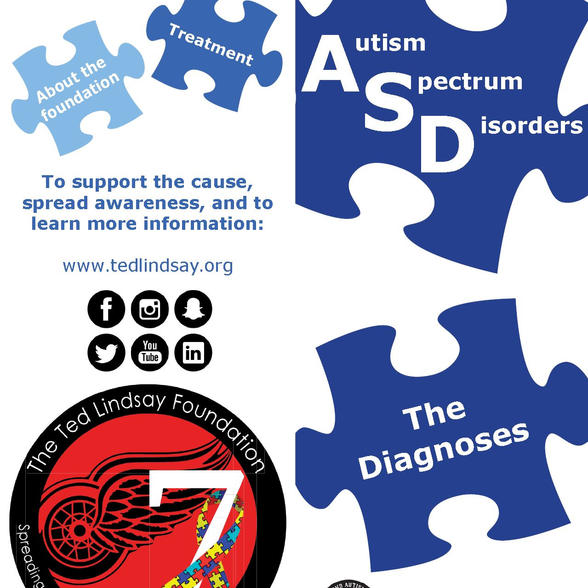 Ted Lindsay Foundation-Brochures