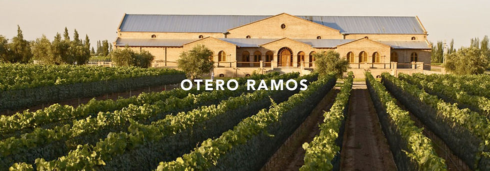 nossos vinhos_otero ramos.jpg