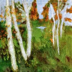 Landscape I   $70