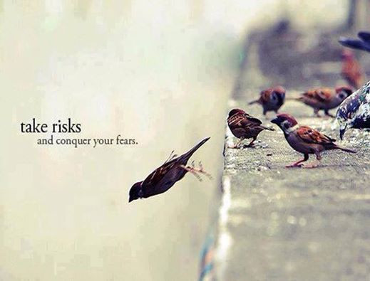 Take risks and conquer your fears. Bird taking a chance to fly.