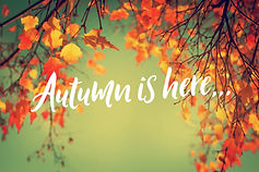 Autumn-is-here.jpg