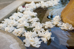 Auberge du SoleilNapa Valley California Wedding Events Flowers Wine Country Florist