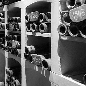 Beautiful cellar in Medoc