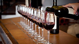Our Medoc private tours