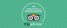 Tripadvisor Certificate of Excellence 2019!