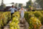 Bordeaux luxury wine tours