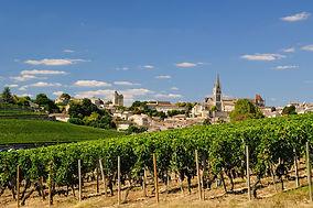 The vineyards of Saint Emilion