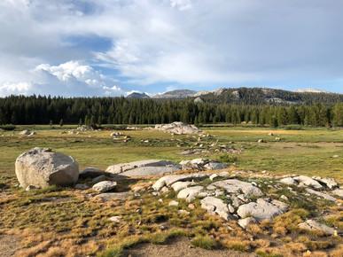 Yosemite National Park, Tuolomne Meadows (2019)