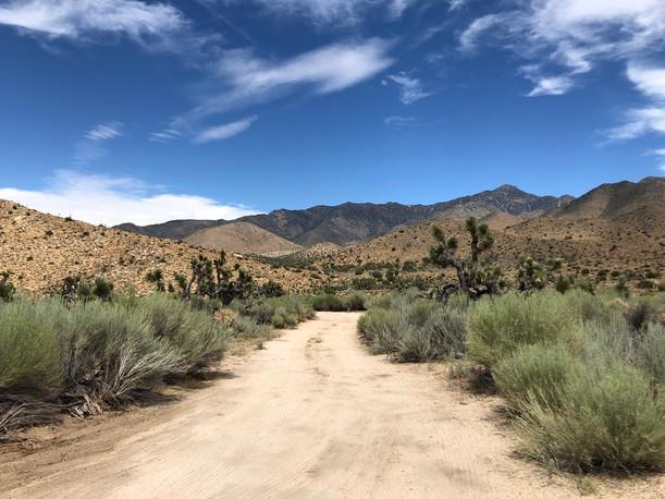 Owens Peak Wilderness, near Onyx (2019)