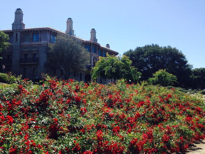 CCRMA, Stanford University (2016)