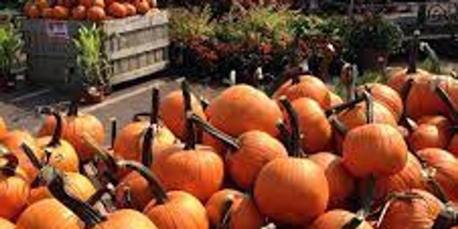 Shadybrook Farms Fall Fest