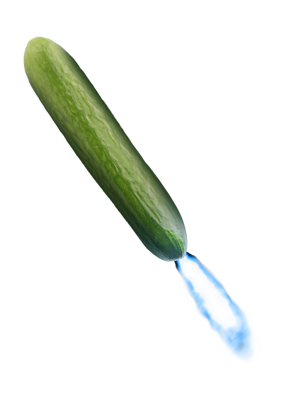 CUCUMBER_MISSLE.png